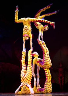 Acrobats could be a great way to keeps guests entertained while they're eating dinner or after dinner at an event! Circus Theme, Circus Birthday, Circus Party, Birthday Parties, Acro Dance, Dance Poses, Moulin Rouge Dancers, Wild Is The Wind, Flexibility Dance
