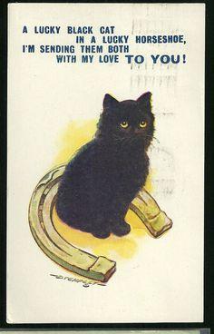 Postcard A Lucky Black Cat In A Lucky Horseshoe D Tempest Good Luck Cats
