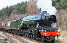The Flying Scotsman keeps coming back - time and again - Scottish Field Steam Trains Uk, Old Steam Train, Live Steam Locomotive, Diesel Locomotive, Steam Art, Flying Scotsman, National Railway Museum, Railroad Photography, Train Art