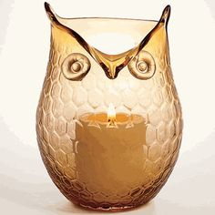 Glass Owl Candle Shade - Monticello