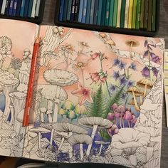 New WIP from Kanoko Egusa's Coloring Book Rhapsody in the Forest. I actually have the Dutch version (Rapsodie in het bos). Don't know if there are any differences. I love the pictures. I think this double page will take some time #kanokoegusa #rhapsodyintheforest #coloring #colouring #coloringbook #colouringbook #adultcoloring #adultcolouring #coloringforadults #colouringforadults #coloredpencils #colouredpencils #prismacolor #prismacolorpencils #prismacolorpremier #buntstifte #ausmalbuch…