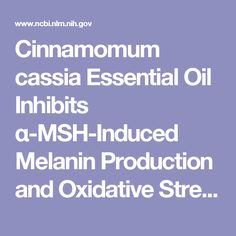 Cinnamomum cassia Essential Oil Inhibits α-MSH-Induced Melanin Production and Oxidative Stress in Murine B16 Melanoma Cells