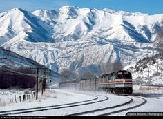 Amtrak to anywhere in the U.S or Canada