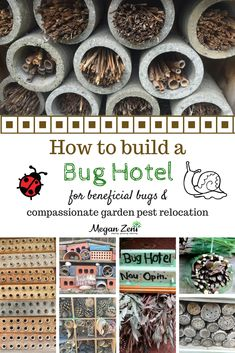 Bug hotels are an essential addition to any garden, and particularly a children's garden. There are really two reasons to build a bug hotel. One is to attract and house beneficial insects so that they are available to work in the garden as biological pest Slugs In Garden, Garden Insects, Garden Pests, Bug Hotel, Organic Insecticide, Japanese Beetles, Beneficial Insects, Pest Control, Garden Planning