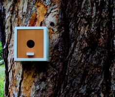 Danish Modern Birdhouse Cube In Redwood By Nathan Danials