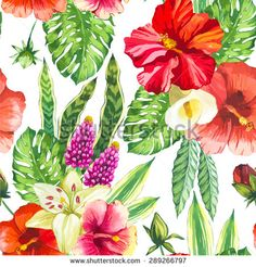 Vector illustration with watercolor flowers. Beautiful seamless background with tropical flowers and plants on white. Composition with white calla lily, chinese hibiscus and monstera leaves.