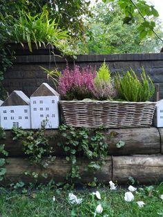 PASTU domov: Podzimní truhlíky s domečky Plants, Plant, Planets