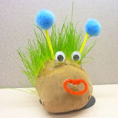 Make your own chia pet! Learn how to create a homemade chia pet with chenille stems and craft pom poms