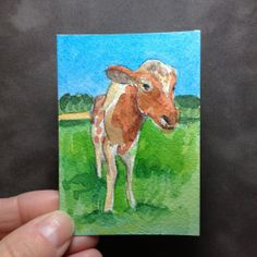 Original watercolor ACEO of Toby from Heartland Farm by abuzzcard, $10.00