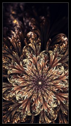 The World of Fractals by Chiara ~ Chiara is a 28 years old Italian architect with the hobby of digital graphics. Fractal images are her greatest passion. In case you're interested, Chiara uses Apophysis to create her artworks.
