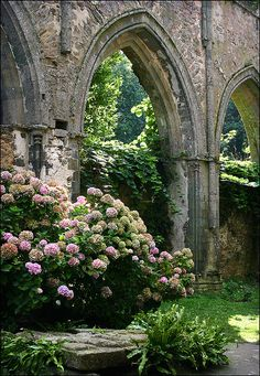 Beauport Abbey near Paimpol ~ Brittany ~ France