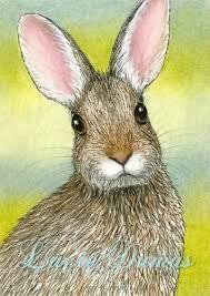 """Résultat de recherche d'images pour """"painting rabbit"""""""