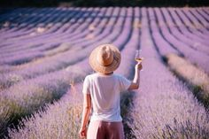 Exploring the French Vineyards: Best Wine Regions in France Map - France Bucket List