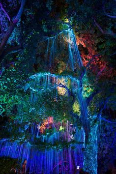Avatar tree by Roll Kader on Fantasy Art Landscapes, Fantasy Landscape, Beautiful Landscapes, Fantasy Places, Fantasy World, Avatar Tree, Avatar Movie, Avatar Disney, Fantasy Forest