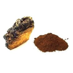 Wild Harvested Chaga   Powder