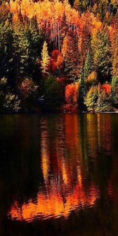 Lakeshore Reflections – Cottonwood Lake, Buena Vista, Colorado - 18 Fascinating Photos of Places in the Amazing Autumn