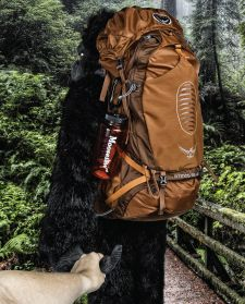 """The Osprey Atmos 65 AG Pack is perf for your outdoor adventures.  Sorry for saying """"perf."""""""