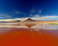 Also known as the red lagoon, the shallow salt lake lies in southwest Bolivia, on the border of Chile. It is found in the beautiful Eduardo Avaroa Andean Fauna National Reserve, which fascinates with amazing landscapes, fauna, flora and is a tourist attraction in the country.