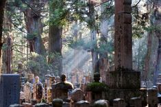 Okunoin Cemetery is in Koya-san, an ancient village located in Japan's mountainous Wakayama Prefecture. It's just one of many sacred places in the Kii Mountain Range collectively inscribed on Unesco's World Heritage list (Credit: Credit: BY-SA Top Travel Destinations, Amazing Destinations, Cool Places To Visit, Places To Go, Ranger, Beautiful Places In Japan, Sacred Mountain, Wakayama, Japan Photo