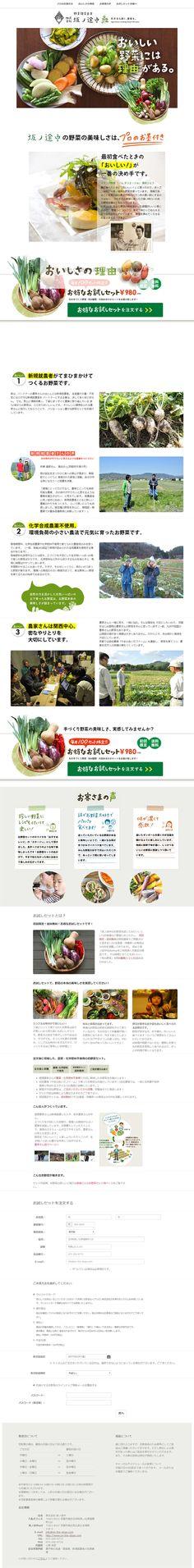 お得なお試しセット【食品関連】のLPデザイン。WEBデザイナーさん必見!ランディングページのデザイン参考に(シンプル系)