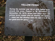 Yellow Fever Story Yellow Fever, Beast, In This Moment, Times, Writing, History, Country, Pictures, Photos