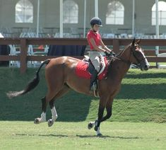 The Best Abdominal Exercises For Horse Riders | LIVESTRONG.COM