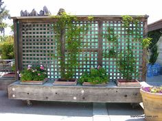 movable privacy fence on casters with built in planters (could also be a bench)