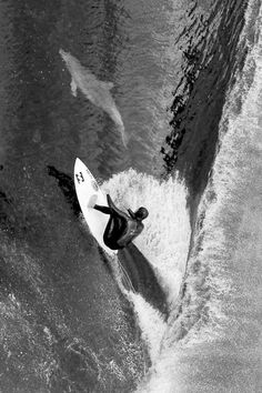 He says he made eye contact with the dolphin and held it while he surfed along for approximately 50 yards. LG JJ #surfinginspiration