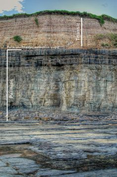 AU: Permian-Triassic Boundary notorious for being the most devastating extinction event in the planets history (95% of life wiped out in a geological blink). It is located at Austinmer, a coastal suburb between Sydney & Wollongong