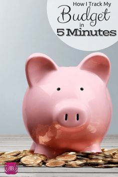 "We've been using this ""5 Minutes A Month Budgeting Nirvana Plan"" for several years and it's fantastic.  It saves lots of time and it actually gets done.  Many people say they want to track everything and end up doing nothing.  This is a great compromise and as I said, far more useful.  http://www.budgetblonde.com/2015/08/11/how-i-track-my-budget-in-5-minutes/"