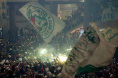 Torcida faz festa impressionante em embarque do Palmeiras em Congonhas