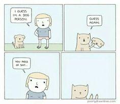 Classic cat.