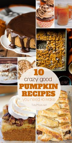 A collection of 10+ Crazy Good PUMPKIN RECIPES you need to make this fall. From…