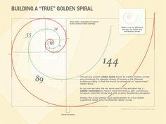 Fibonacci infographic