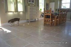 600x400x15mm Dijon laid in a brick bond pattern with a doggy having a good look around