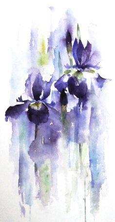 Splashy Iris