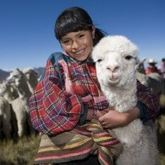 Donate an animal with a charity gift to Heifer | Donate a llama today
