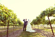 Bride & Groom in the vines (photo by Kabloom Studios)