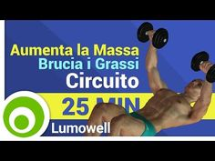 Muscle building workout for men to do at home. Dumbbell exercises to gain muscle mass and get fit body. Strength workout with weights to build muscles fast. Gym Workout For Beginners, Abs Workout For Women, Workout Videos, Gain Muscle Fast, Build Muscle, Muscle Mass, Muscle Building Workouts, Gym Workouts, Exercise During Pregnancy