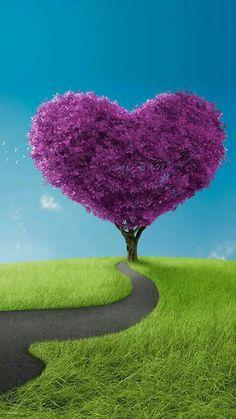 """""""Gratidão é uma carta de amor que a gente envia pro universo."""" Some Beautiful Pictures, Heart Pictures, Heart Images, Heart Wallpaper, Love Wallpaper, Nature Wallpaper, Heart In Nature, Heart Tree, Flowers Nature"""
