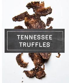 The Périgord region of France isn't the only place that's got game when it  comes to growing black truffles. Look out, world, because here comes  Chuckey, Tennessee and Tom Michael's black Périgord  truffles. Grown among 18 acres of truffle trees, Michael's truffles are  foraged by his prized truffle-hunting dogs (Lagotto Romagnolos), who have  been known to find up to 200 pounds of fungi in a single season.