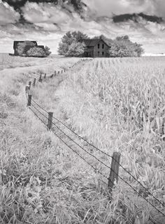Fence To Old Farm House