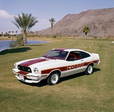 288 best ford mustang images on pinterest in 2018 motorcycles rh pinterest com