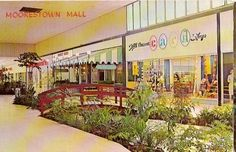 The duck stream at the Moorestown Mall in Burlington County, New Jersey. Vintage photo of the mall. #mall