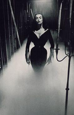 Mistresses Of The Dark