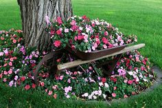 Impatiens & wheelbarrow.. i need to keep my eye out for an old beat up wheelbarrow, you could change the plants out for the seasons