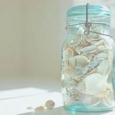 schelpen in een glazen pot