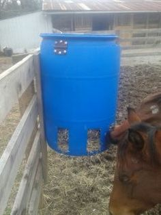 Image from http://www.horsegroomingsupplies.com/horse-forums/attachments/horse-health/195219d1387221539-slow-hay-feeder-free-choice-easy-cheap-image...jpg.