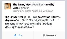 #Scrubby #madeinusa #florida #citrus #orange #lemon #paint #Art #essentials  #Virginia @The Empty Nest- Janet Metzger
