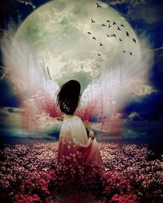helycharlotte:  Angel-Moon